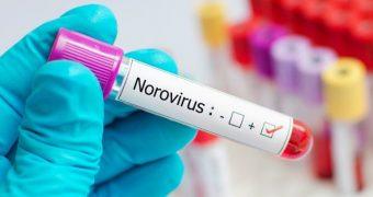 Ştiţi cât de contagioasă este gastroenterita?