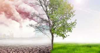 Aerul mai poluat provoacă mai multe infarcte