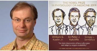 Un profesor român a contribuit la câştigarea premiului Nobel pentru Medicină 2019
