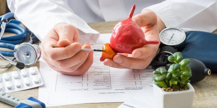 sănătatea prostatei, prostată, activitate sexuală regulată,