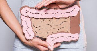 6 lucruri pe care trebuie să le ştiţi despre intestin