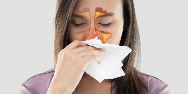 remedii pentru sinuzită, sinuzită, remedii, ciuboţica-cucului, soc, lumânărica, soc, tei, cimbru-de-cultură, cimbru, antiviral, antiinflamatoare,