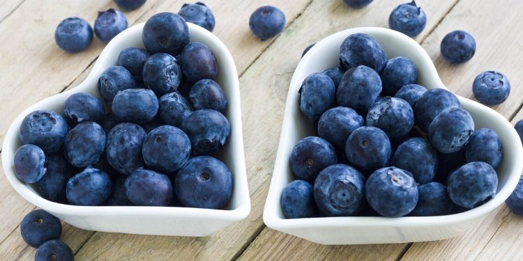 afine, beneficii afine, antioxidanti, vitamina c, fructe, fibre, diabet,