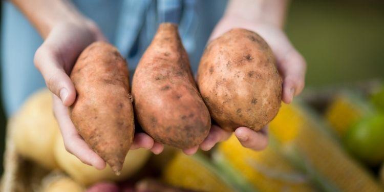 cartofi albi, cartofi dulci, cartofi, potasiu, beta caroten,