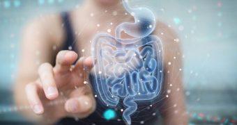 Tractul digestiv, un microunivers cu peste 140.000 de virusuri