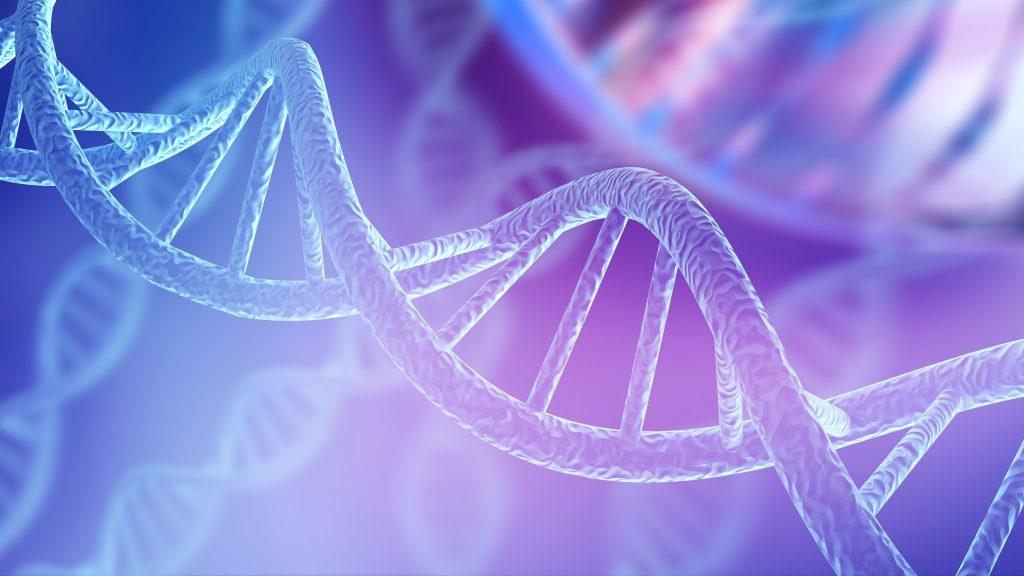 grăsime, obezitate, gene, factorul genetic,